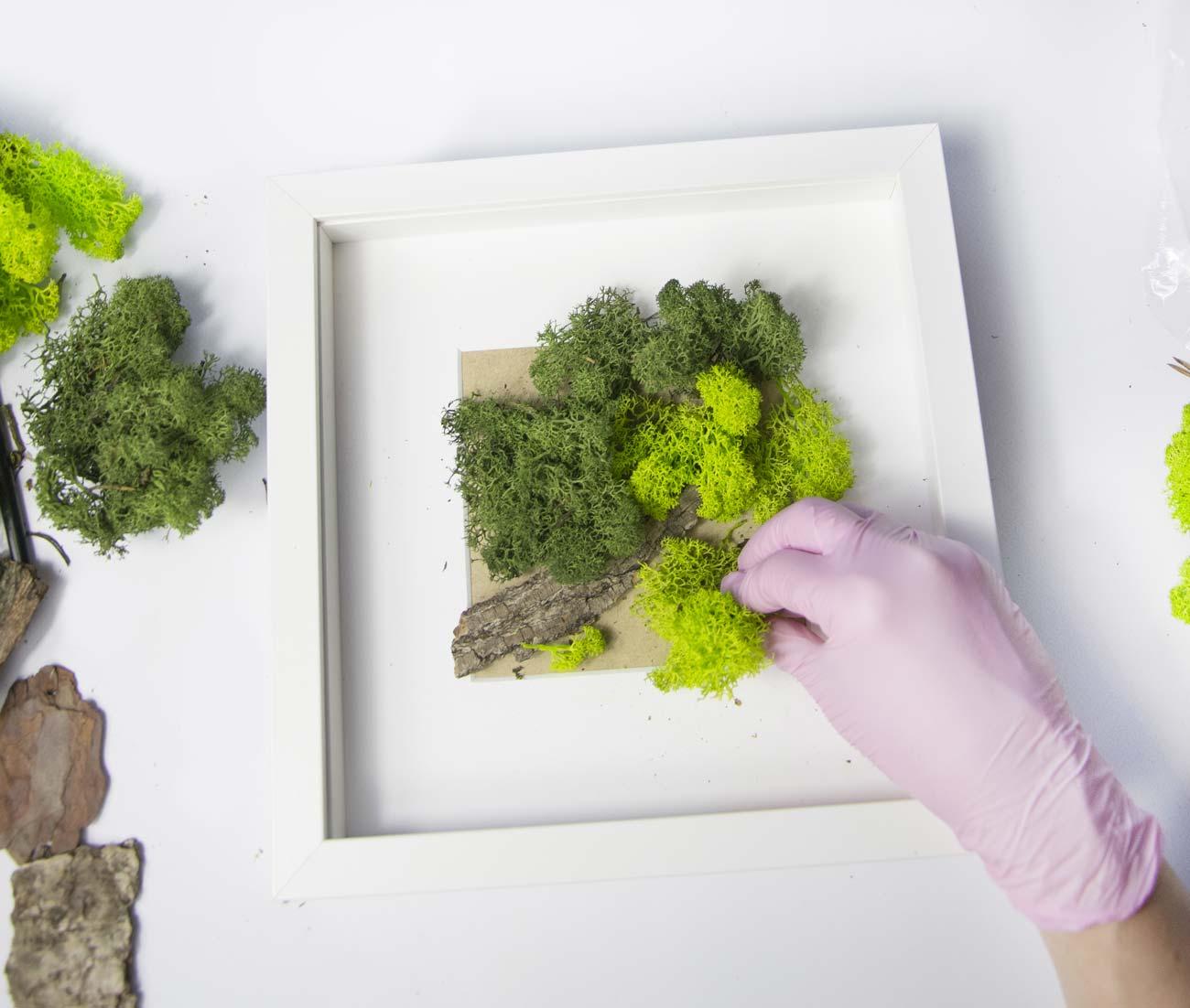 Una pintura de musgo: una decoración verde suave para las paredes de la casa o como adorno.
